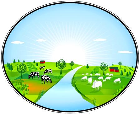 rinds: Farming panorama Illustration