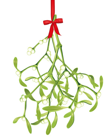 mistletoe: hanging mistletoe Illustration