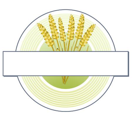 signet: grain signet