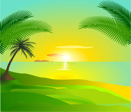 caribbean island: tropical sunset