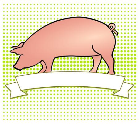cerdos: Etiqueta de la carne de cerdo Vectores
