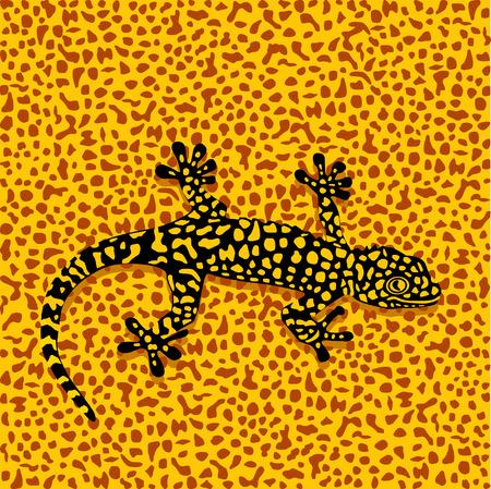 salamandra: Camuflaje de salamandra Vectores