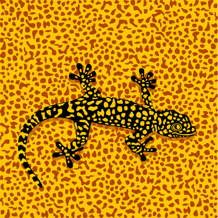 adapting: Salamander camouflage