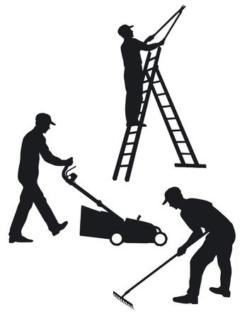 garden maintenance: Gardening Illustration