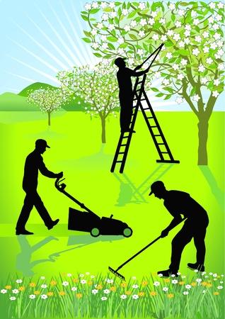 mowing the lawn: Gardeners gardening