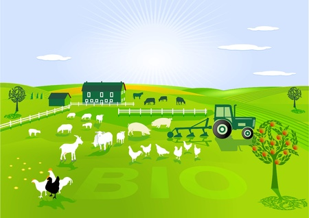 agricultura ecológica Ilustración de vector