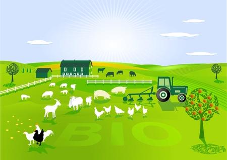 l'agricoltura biologica Vettoriali