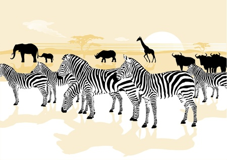 wild animals in the savannah Vector
