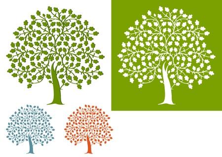 foglie di quercia: quercia