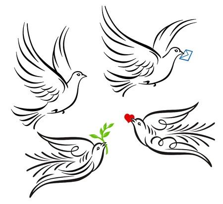 pomba: Dove, pigeon Ilustra��o