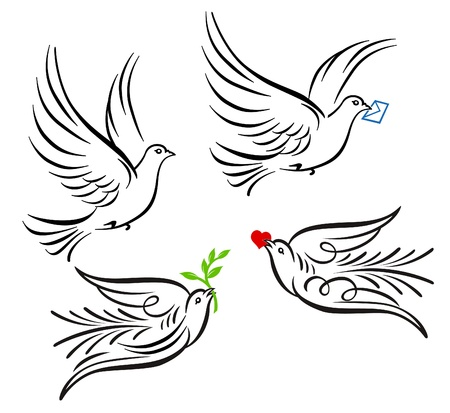 pigeons: Dove, pigeon Illustration