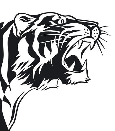 agression: Signe de tigres en noir et blanc