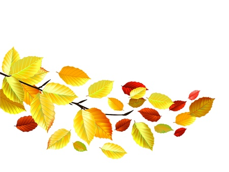 październik: Autumn Leaves w październiku