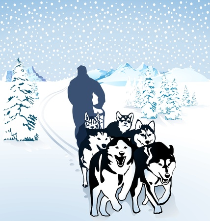 Dog sledding in the snow Vector
