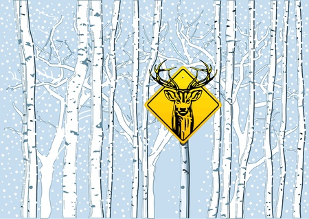 birch forest: Attention deer in the woods Illustration