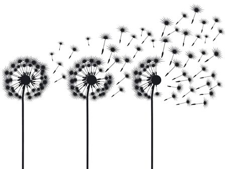 three dandelions Stock Vector - 10431459