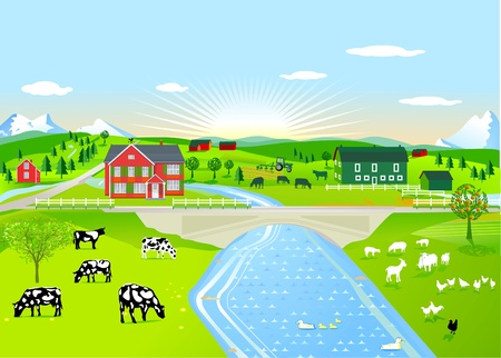 Summer morning landscape with agricultural animals
