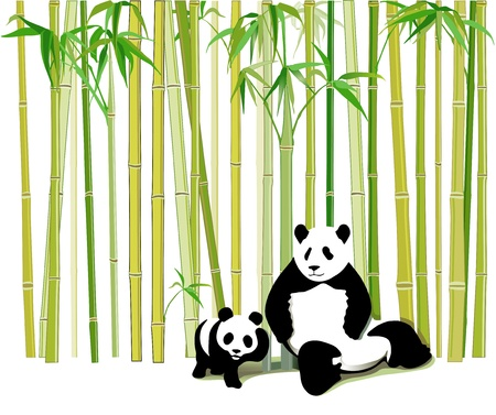 Panda mother and child Stock Vector - 10590512