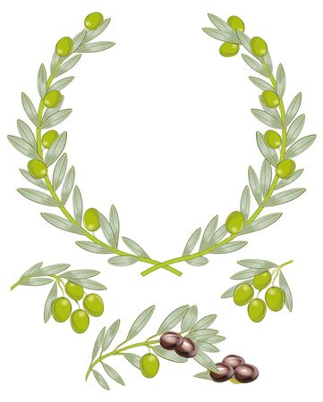 wreath: Olive branch