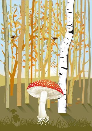 misty forest: Bosque con setas Vectores