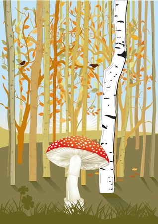woody: Forest with mushroom
