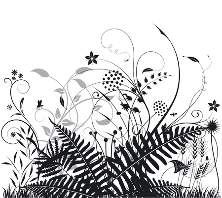 Plants and ferns Vector