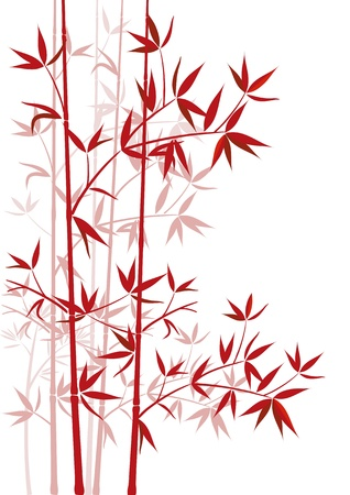 bamboo leaf: red bamboo