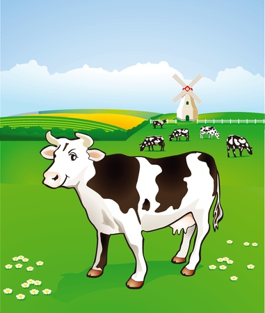 Cow in the pasture Stock Vector - 11485618