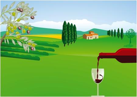 olive farm: Tuscany, Provence Illustration