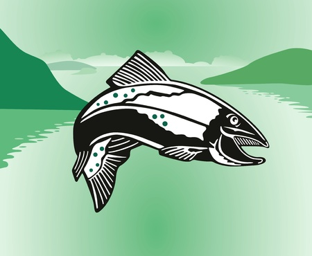 angling: jumping salmon