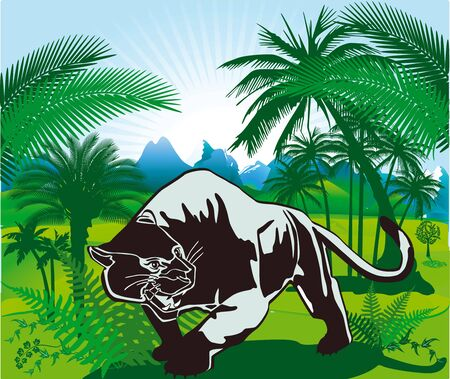 Jungle and Panter Vector