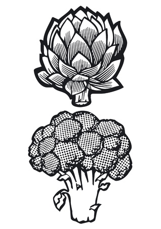 Artichoke and Broccoli Vector