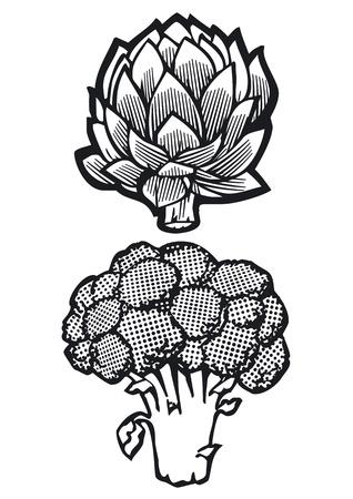Artichoke and Broccoli Vector