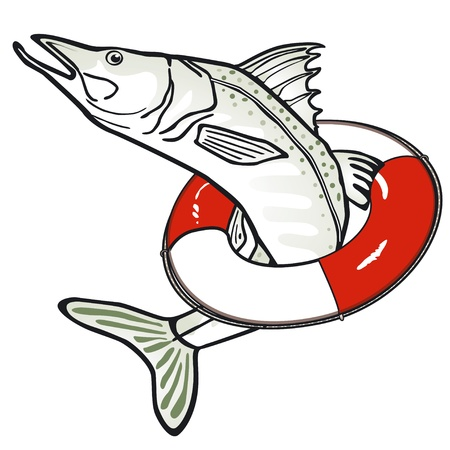 pike: Fish with a life ring Illustration