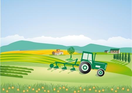 champ de mais: Agriculture avec le tracteur