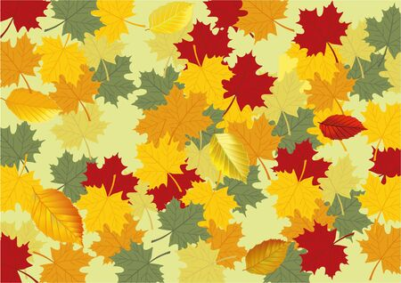 autumn leaves Stock Vector - 12385225