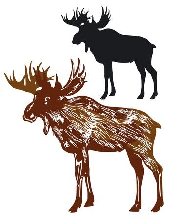 moose, elk Vector