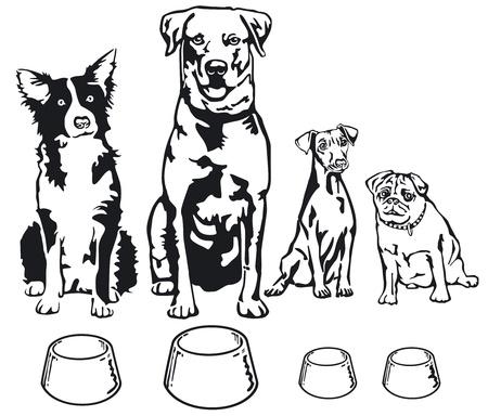 engedelmesség: Négy kutyák élelmiszer-tál Illusztráció
