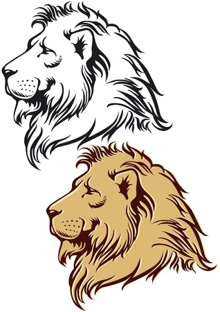 Lion in profile Vector