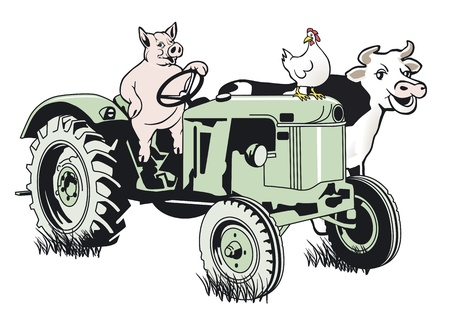 Pig on the tractor Stock Vector - 12802251