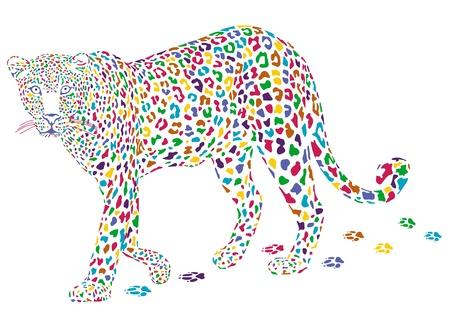 leopards: more colorful leopard