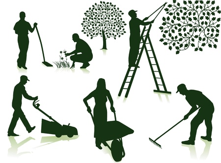 schubkarre: Gartenpflege