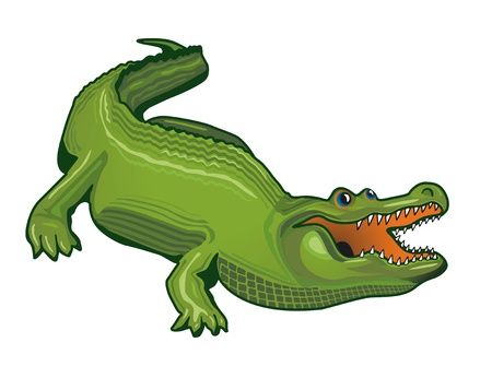 large alligator Stock Vector - 12802257