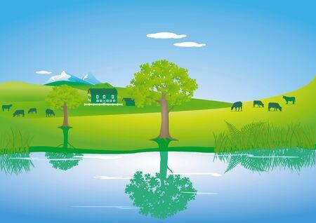 mountain meadow: Paisaje con las vacas en un lago