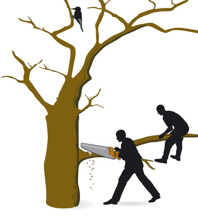 argumentative: cut on career