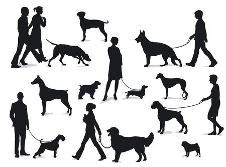 perro labrador: El caminar con los perros