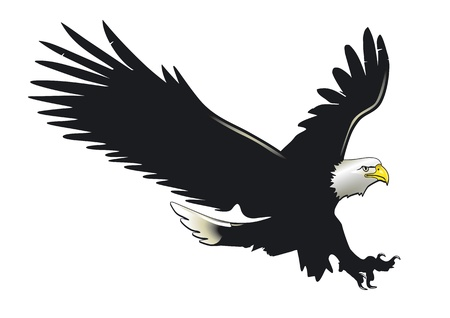 Eagle in flight Vector