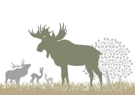 Elk and wild animals Vector