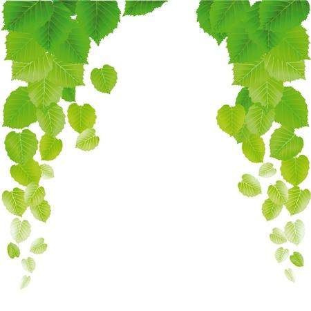 fresh leaves Ilustração