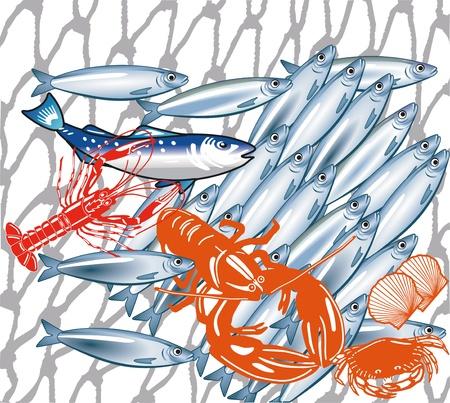 fischerei: Fischerei